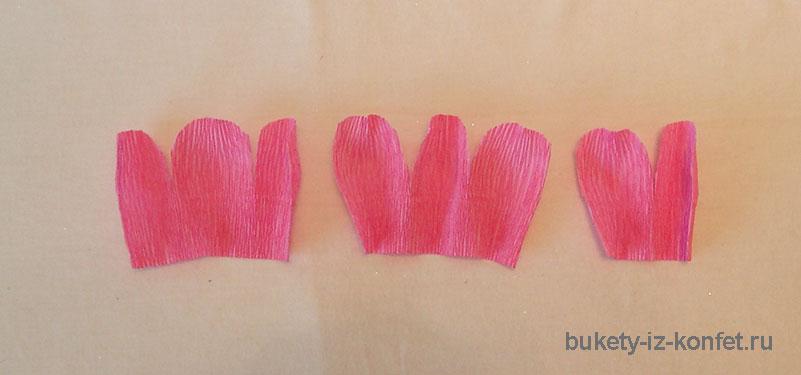 anemona-svoimi-rukami-19