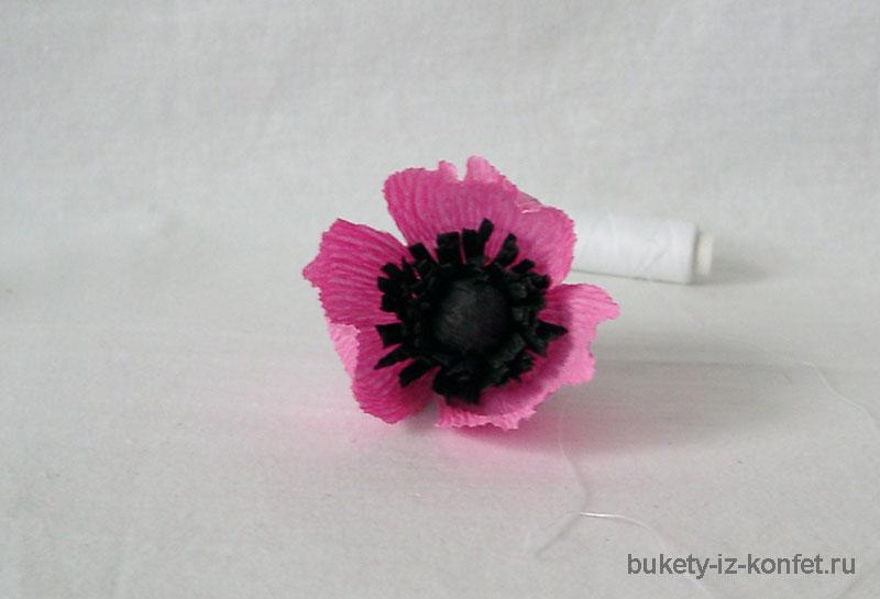 anemona-svoimi-rukami-21