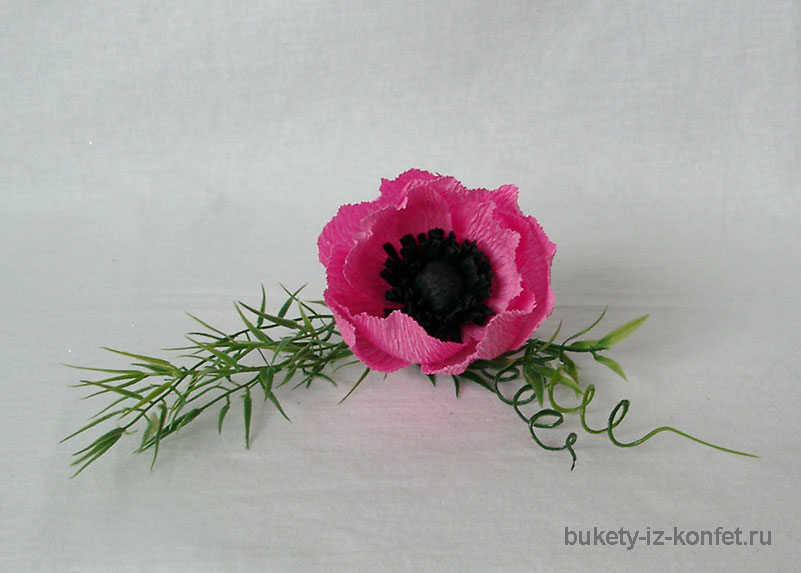 anemona-svoimi-rukami-25
