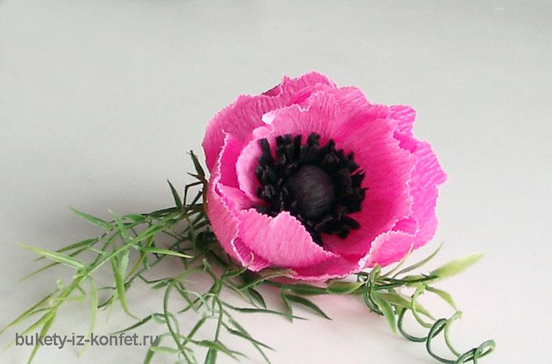 anemona-svoimi-rukami-01