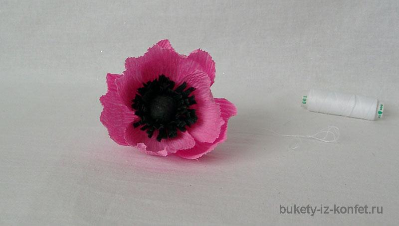 anemona-svoimi-rukami-23