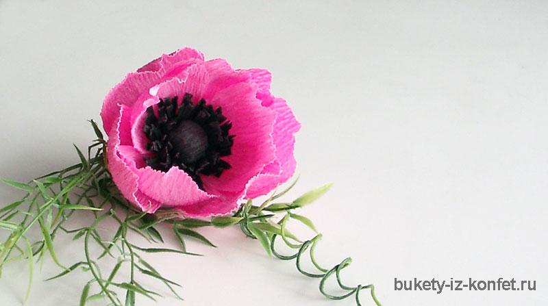 anemona-svoimi-rukami-28